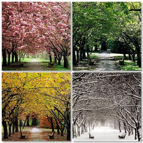 As quatro estações