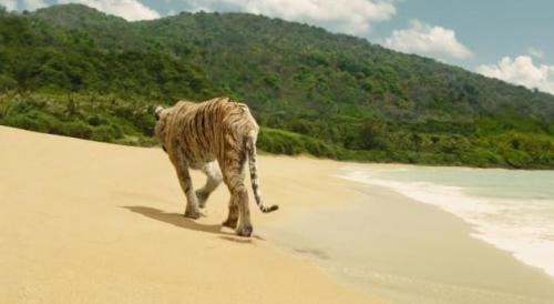 Tigre Richard Parker indo embora...