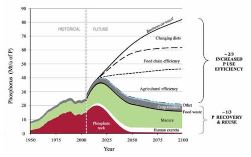 Sustentabilidade no uso do fósforo – perspectivas