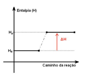 endotermica